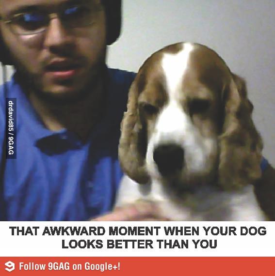 Неловкий момент. Собака выглядит лучше меня.
