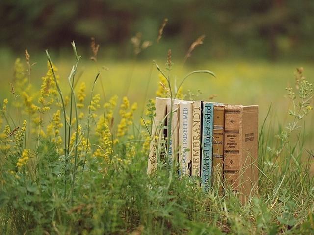книги на траве
