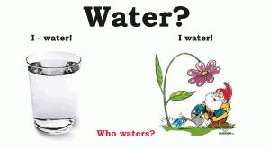 Конверсия слова water в английском языке.
