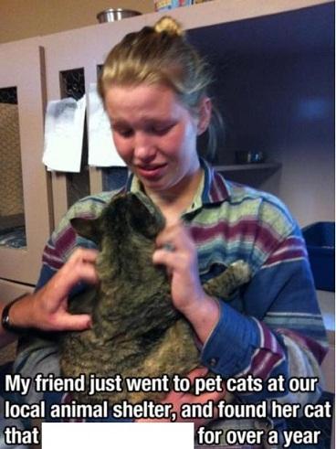 Кот и счастливая хозяйка