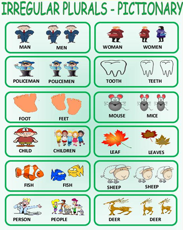 множественное число существительных в английском