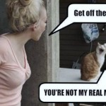 Непослушный кот комикс