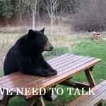 Медведь сидит за столом и говорит